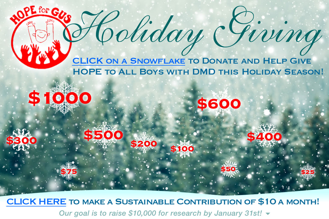 Annual Holiday Fundraising 2016